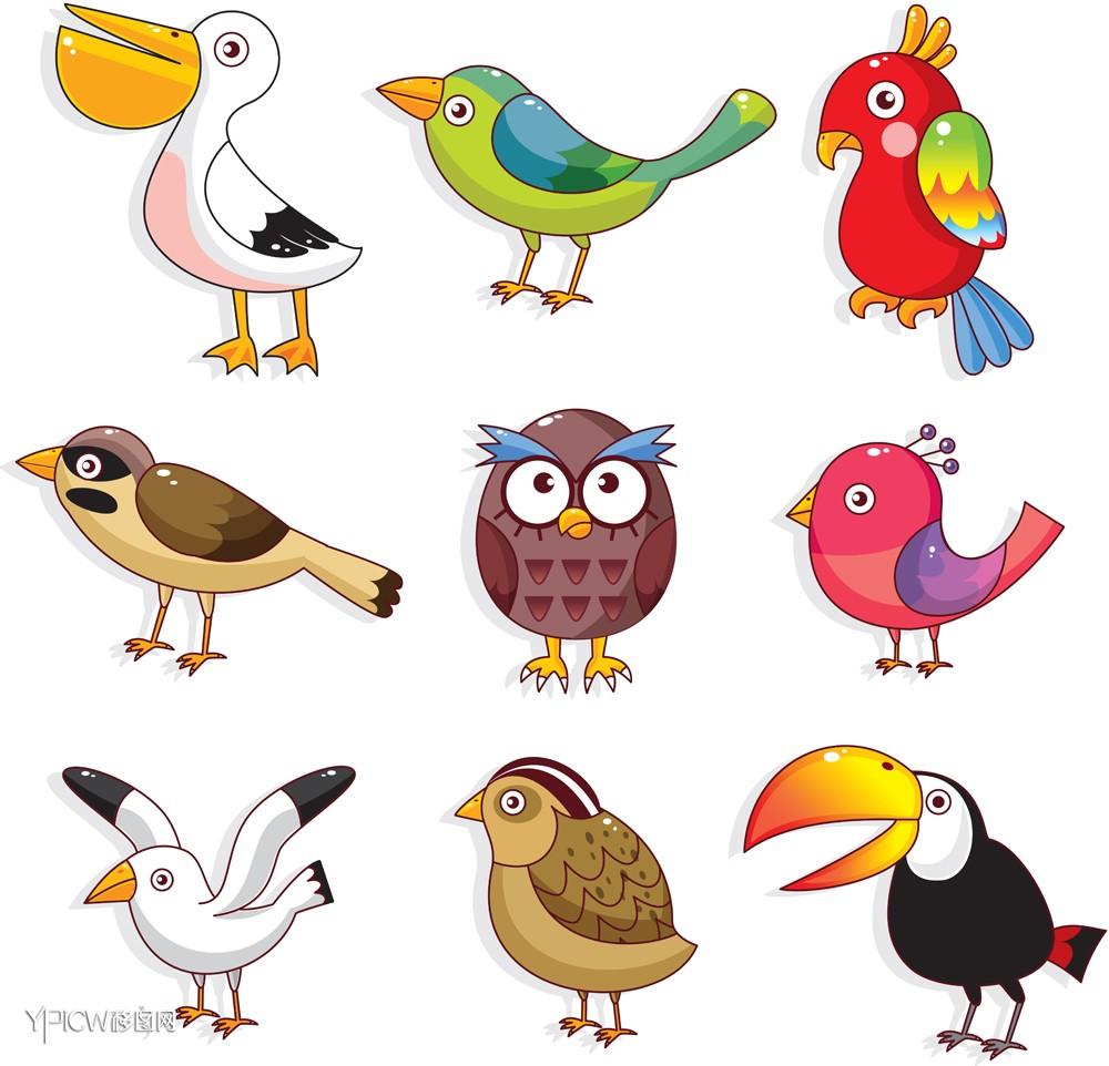 矢量动物 > 家禽家畜8  关键词:花草树木卡通鸟鸟动物飞禽小鸟大鸟鸟图片